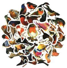 Lijstje lievelings - stickers!   Bulletjournal.nl Scrapbook Stickers, Bullet Journals, Bird Houses, Rooster, Painting, Animals, Animales, Animaux, Birdhouses