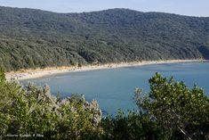 Quasi in fondo alla Toscana, laggiù, vicino al confine con il Lazio si trova Cala Violina. Un angolo di mare di rara bellezza
