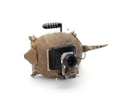 Camera (Armadillo), 2012. Swiss photography duo Taiyo Onorato and Nico Krebs, DIY large format camera... mixing the worlds of taxidermy and photography.