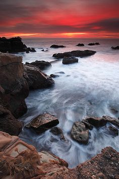 Point Lobos State Reserve ~ Carmel, California