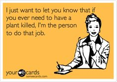 Funny Friendship Ecard: I just want to let you know that if you ever need to have a plant killed, I'm the person to do that job.