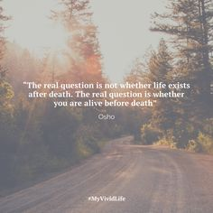 Are you fully alive? Are you living the fullest expression of yourself? Or are you being picked up and put down like a puppet? #myvividlife