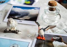Snowy Owl and Puffin - Polar Regions Unit Study