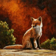 Red fox warming himself in the sun - Original Oil Painting by wildlife artist Crista Forest - Fine Art Prints Fox Painting, Forest Painting, Forest Art, Wildlife Paintings, Wildlife Art, Oil Paintings, Fox Pictures, Wolf, Horse Portrait