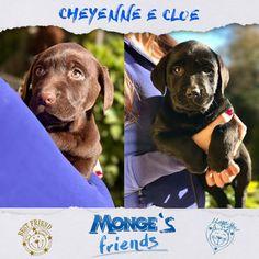 Cheyenne e Cloe #Mongesfriends