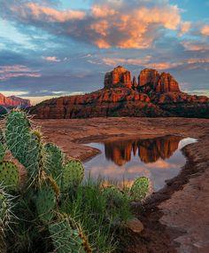 Cathedral Rock, Sedona, Arizona; photo by Guy Schmickle