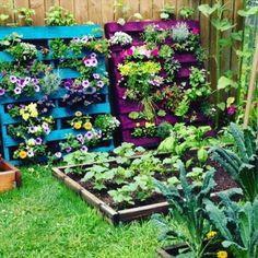 DIY Pallet #Planters | #DIY and Craftshttp://pinterest.com/pin/555913147730625209/