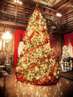 From the Rockefeller Center tree in New York City to celebrity homes, survey a gallery of spectacular trees.