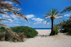 Vai, Crete  Perfect for swimming in the Mediterranean Sea!