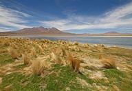 Altiplano, South America