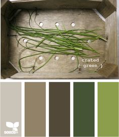 paint-crated green