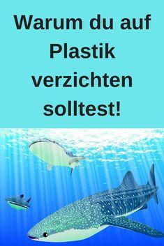 #Nachhhaltigkeit #Umweltschutz #Meer #Tiere #Naturschutz #Plastikmüll
