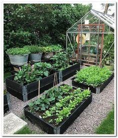 Best 52 Vegetable Garden Design Ideas for Green Living - Bepflanzung Backyard Vegetable Gardens, Veg Garden, Garden Types, Vegetable Garden Design, Garden Cottage, Garden Edging, Garden Beds, Outdoor Gardens, Vegetables Garden