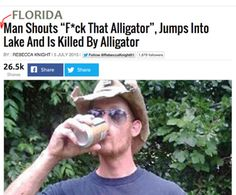 Fuck that alligator via /r/funny...