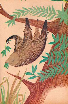 Sloth art!