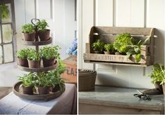 Indoor herb garden :)