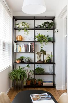 floor standing book shelf covered in plants (could do the iron and raw wood you were talking about )