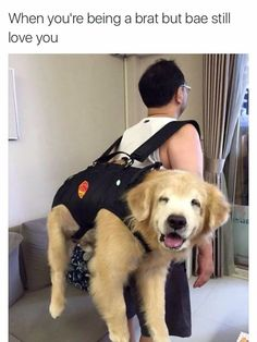 Great way to carry pets!!!