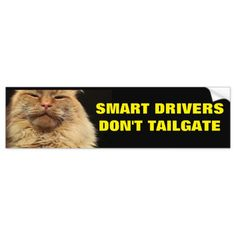 Smart Drivers Don't Tailgate. Mean Cat  -  back them off with this grumpy looking kitty....and be careful out there!        ... #custom #print on demand art themed #gift #bumpersticker design by #talkingbumpers - #bumpersticker #tailgating #backoff #twosecondrule #roadrage #followingdistance #tooclose #slowerigo #funnycatmemes #kittypictures #grumpyangryanimal #slow #intelligent #simplebuttrue #tailgate #too #close #youmadbro #inyourface #grill #down #traffic #driving #hightway #freeway