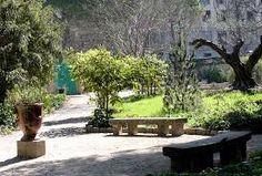jardin des plantes de montpellier on pinterest - Buscar con Google