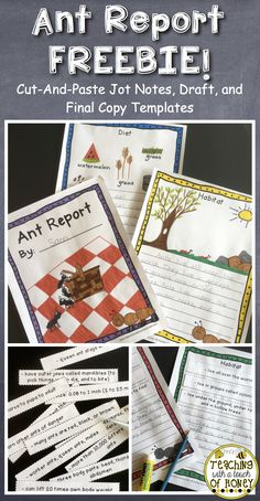 Support your students with their report writing as they write an ant report with this FREEBIE! Cut-and-paste jot notes are provided along with draft and final copy templates. Check it out! https://www.teacherspayteachers.com/Product/Insect-Report-on-Ants-No-Prep-FREEBIE-3137945