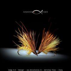 Sedge MB – Moscatzetze.com