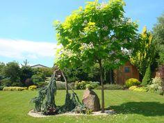 Realizované návrhy zahrad | Okrasna-zahrada.cz, návrhy a realizace zahrad Plants, Plant, Planets