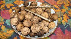 Just picked fresh walnuts ...