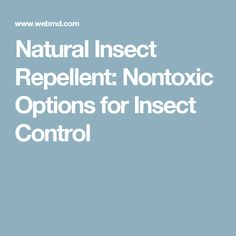 Natural Insect Repellent: Nontoxic Options for Insect Control
