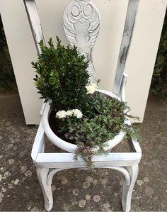 Convertir una vieja silla en macetero con chalk paint Pintyplus, la pintura en spray. #diy #spray #paint #pintura #ideas