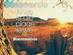 My droom Afrikaanse Quotes, Quotes And Notes, Qoutes, Words, Memes, Sd, Africa, Heart, Decor