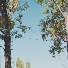TREE SCHOOL  La grimpe d'arbres, c'est aussi un travail sur la confiance en soi... #treeclimbing #education #nature
