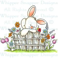 I am in LOVE with Whipper Snapper Stamps! We have a few bunny stamps for those of you wanting to get a jump start on your Easter cards but my favorite might be Sheepdog & Hydrant or Colby's Caffeine! Easter Drawings, Animal Drawings, Cute Drawings, Easter Paintings, Easter Colouring, Bunny Art, Cartoon Design, Stencil Art, Rock Crafts