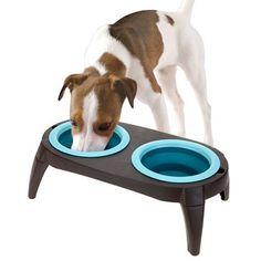 ¡Este práctico y atractivo comedero doble para perros y gatos es perfecto para tus mascotas! Cuenta con 2 espacios de aprox. 11 cm de diámetro cada uno, para colocar la comida, el agua o ambas cosas a la vez, así tu perro o gato podrán comer y beber cómodamente. Este comedero para animales dispone también de cuatro patas desmontables. Medidas aprox. (sin patas): 40 x 3 x 22 cm (con patas: 40 x 15 x 22 cm). Realizado en plástico. Se limpia con facilidad