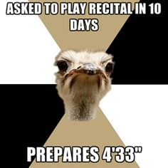 Music Major Ostrich. this is Hilarious!!! I love 4 min and 33 sec. Best recital song ever... if only my professors agreed! ;)