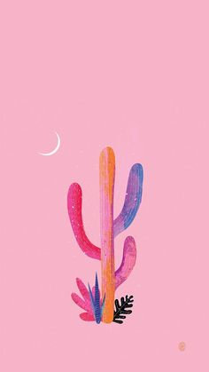 20 Cutest Wallpaper Cactus for Your iPhone Wallpaper Tumblr Wallpaper, Wallpaper Backgrounds, Iphone Wallpaper, Pop Art Wallpaper, Colorful Wallpaper, Iphone Hintegründe, Photo Deco, Instagram Background, Cactus Flower