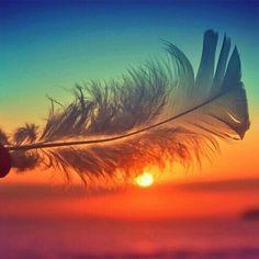Manda embora o que não te trás felicidade Se você iniciou o seu dia com alguma preocupação, a tarde pode ser bem melhor