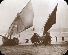Fishing Boats,   Mar Del Plata.  Argentina