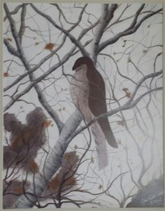 """Daily Paintworks - """"Winter Hawk"""" - Original Fine Art for Sale - © Gail Ruth Peterson"""