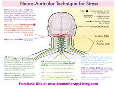 Neuro-Auricular Technique | Parkinson's Treatment | Young Living Essential Oils | Spiritual Healing | Raindrop Technique | DianaEwald.com