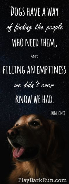 """""""Dogs have a way of finding the people who need them, and filling and emptiness we didn't ever know we had"""" - These are some of the most heart-warming and beautiful dog quotes of all time."""