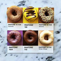 Vegan doughnuts got me like #pantoneposts by lucialitman