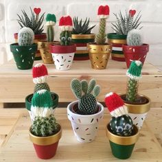 Idea Of Making Plant Pots At Home // Flower Pots From Cement Marbles // Home Decoration Ideas – Top Soop Christmas Plants, Christmas Mood, Diy Christmas Gifts, Christmas Projects, Cactus Decor, Plant Decor, Cactus Flower, Flower Pots, Navidad Natural