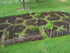Edible Landscaping: Permaculture - Kitchen Garden | jardin potager…