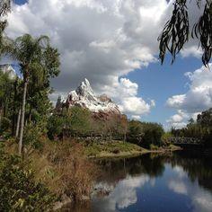 "Animal Kingdom in Disney ""Expedition Everest"""