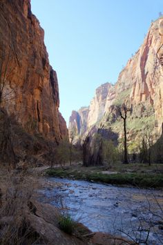 Riverside Walk in Zion National Park  #landscape #riverside #walk #zion #national #park #photography