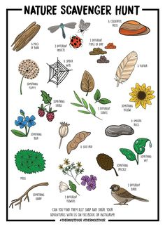 - Nature Scavenger Hunt – Printable – Therm Out of doors – natural scavenger hunt , , hunt ideas for kids outdoor , ideas Backyard Scavenger Hunts, Nature Scavenger Hunts, Scavenger Hunt For Kids, Nature Activities, Summer Activities, Toddler Activities, Outdoor Activities, Time Activities, Camping Activities