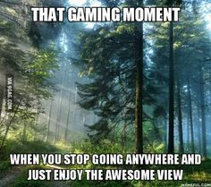 I definitely stopped several times to watch trees swaying in the breeze or check out the cobblestones in Dragon Age: Inquisition and Assassin's Creed Unity.  Guilty!