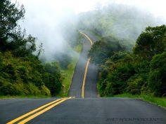 Waimea Canyon Road, Na Pali, Kauai, Hawaii