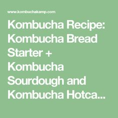 Kombucha Recipe: Kombucha Bread Starter + Kombucha Sourdough and Kombucha Hotcakes Recipes - Kombucha Kamp